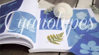 How To Make Botanical Sun Prints | Cyanotypes
