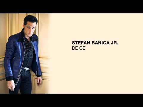 Stefan Banica - De ce?