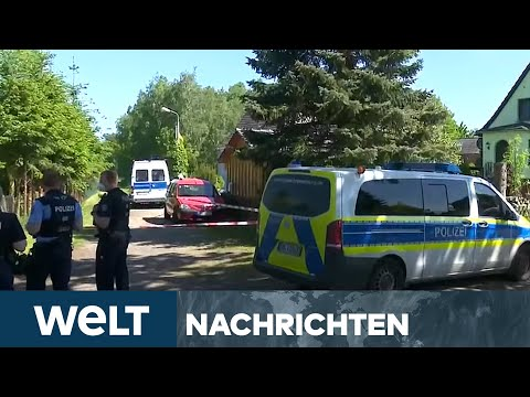 KETTENSÄGEN-MORD in der PRIGNITZ: Bluttat in Lanz! Mann trennt Frau den Kopf ab   WELT Newsstream
