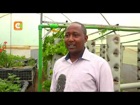 SMART FARM | Focus on Aquaponics Farming