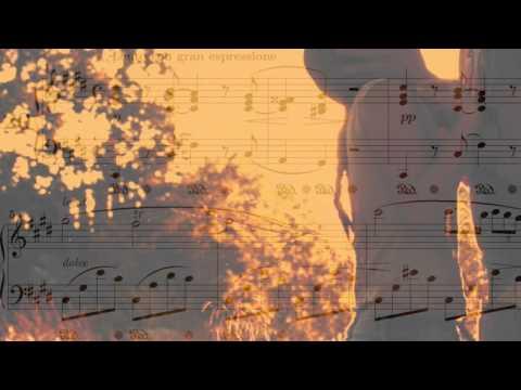 Chopin Nocturne in C sharp Minor (No.20)