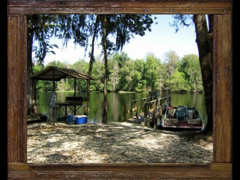house best brilliant cabins tiny pet rentals friendly florida in cabin