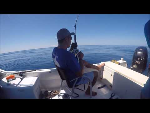 Deep Sea Fishing - Sailfish in Manado Sulawesi Indonesia