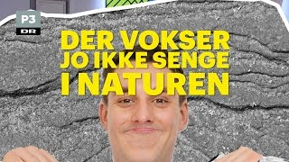 Naturlighed anno 2016   Go' Morgen P3   DR P3