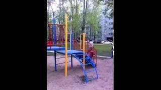 Собака на детской площадке