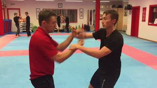 Wing Chun Miko Kung Fu Suisse