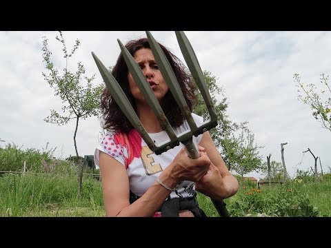 Forca Vanga Magica Per Vangare Senza Nessuna Fatica Youtube