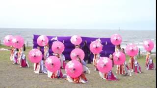 神奈川県平塚市で活動している女子だけのよさこいチーム「疾風乱舞」で...
