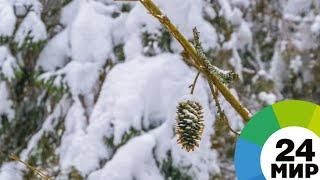 Акмолинскую область завалило снегом - МИР 24