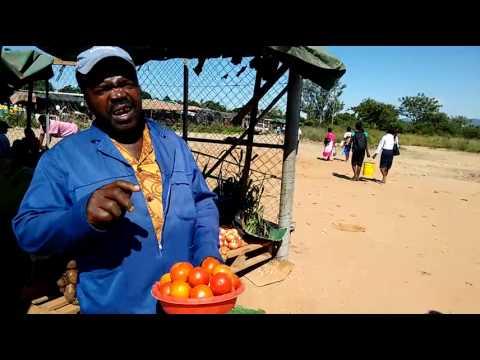 Open Defacation at Chitima Market Masvingo - Tell Zimbabwe news