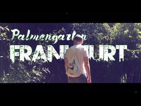 PALMENGARTEN | GREEN HEART OF FRANKFURT | Shot on IPhone SE | DJI Osmo Mobile