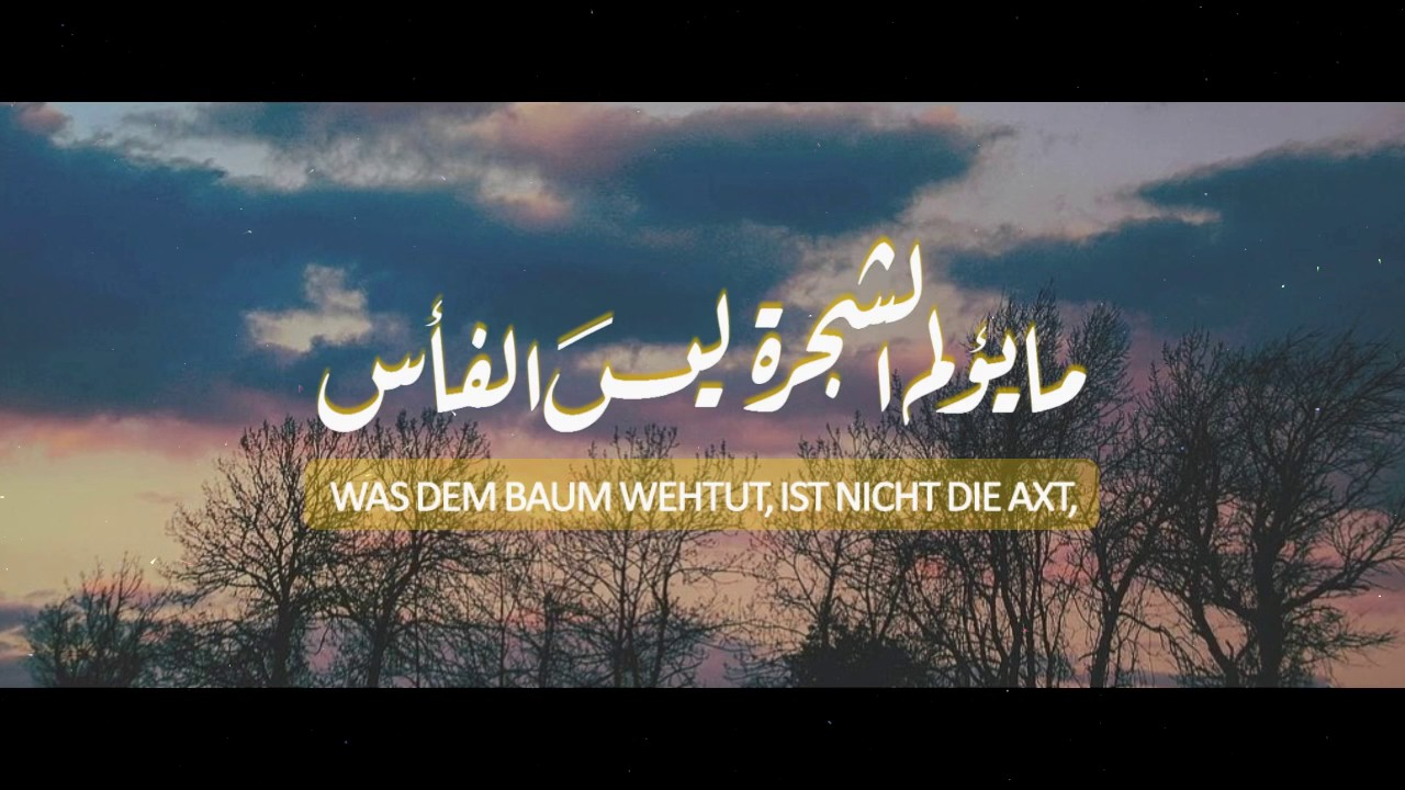 Schöne Arabische Sprüche Mit Übersetzung | Zitate Spruche Youtube