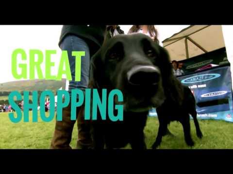 Bramham Horse Trials 2017 Advert