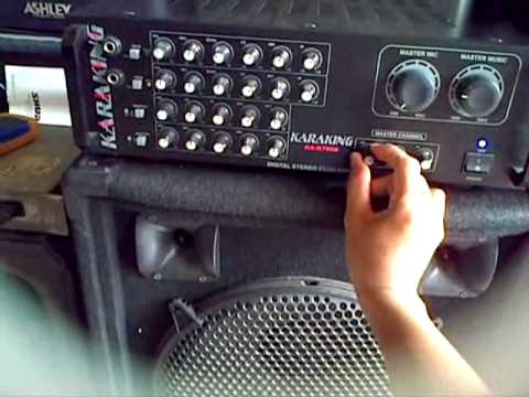 Sepiker karaoke 12'' ashley CS 550V SK