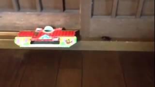 【閲覧注意】ゴキブリがゴキブリホイホイに入る瞬間を偶然撮らえたのでサザエさんのbgmつけてみた。 thumbnail