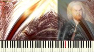 Скачать Токката и фуга Бах И С Toccata And Fugue In D J S BACH Пример игры на пианино Piano Cover