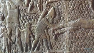 ¡Top 10 Horroríficos Métodos Medievales de Tortura!