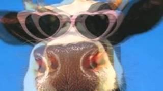Приколы - Так мычит обычная корова...