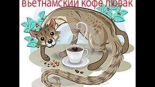 ВЬЕТНАМСКИЙ КОФЕ ЛЮВАК