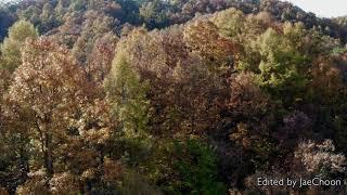 가을단풍_4_충북 괴산군 문강면