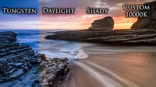 Photography Tutorial: White Balance Made Easy