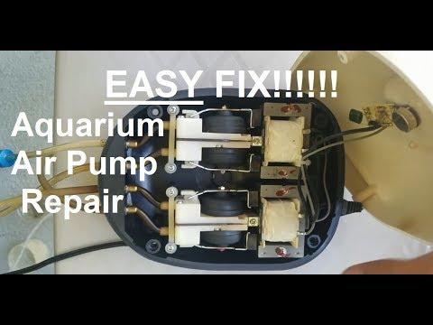 How to Fix Aquarium Air Pump EASY!!!!