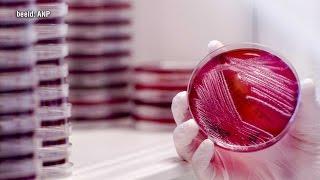 Horror-bacterie: dit moet u weten