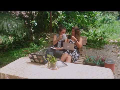 Café bio au Costa Rica, pour vous et la planète !