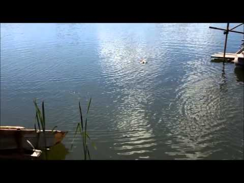 рыбалка понти гжель
