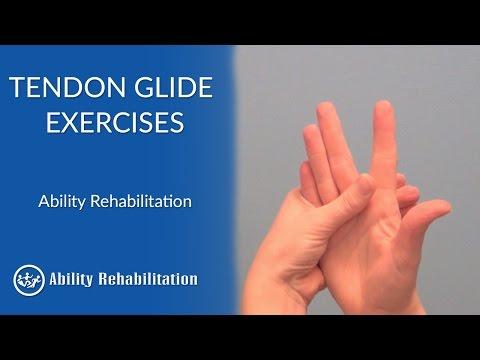 Tendon Glide Exercises | Ability Rehabilitation