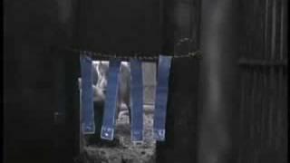 イノシシ対策グッズ「亥旦停止」の実験映像です。ちょっと暗いですが、...