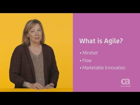Agile Development 101