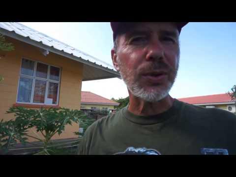 Voedselbos in Curaçao ruim 4 maanden later