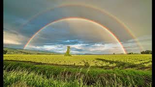 Am Ende des Regenbogens - Original Song (Kinderlied)