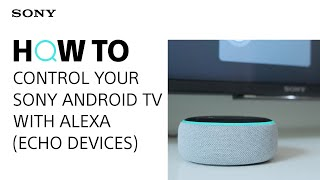 Видео с советами: Управление телевизором Sony с Android TV с помощью Alexa (устройства Echo)
