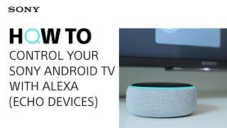Видео с советами: Управление телевизором Sony с Android TV с помощью Alexa (устройства Echo)