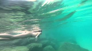Barbados - swimming with turtles