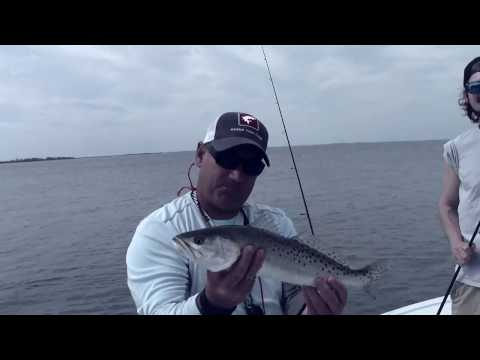 Brian Caudill Fishing Charters Clearwater Palm Harbor Dunedin Fishing Trips
