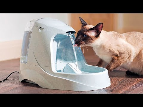 MUST HAVE GADGETS FOR YOUR PETS