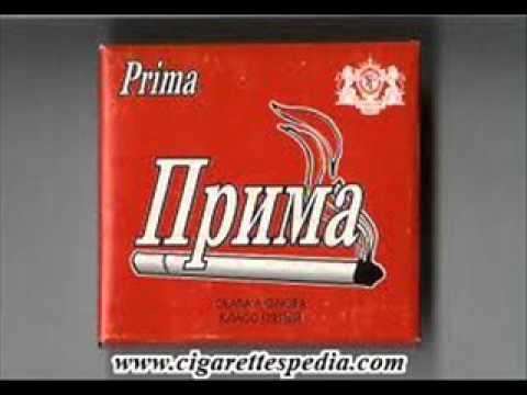 Guntix - PRIMA