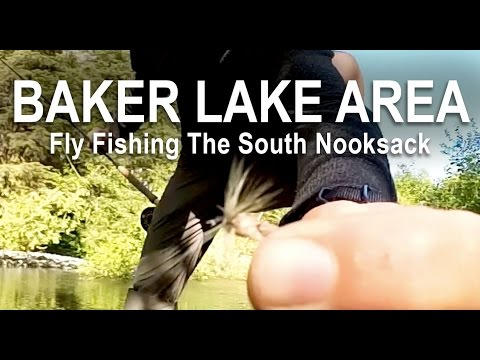 Flyfishing The South Nooksack River In Baker Lake National Forest