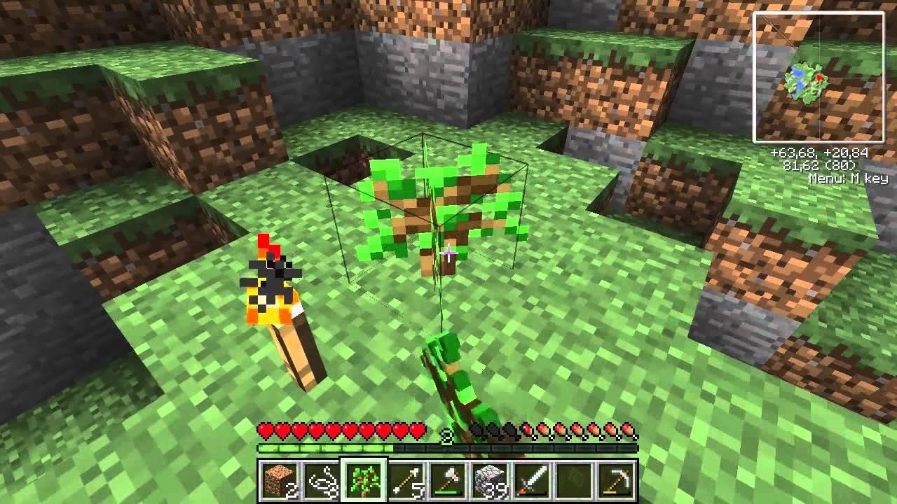 maciek and bremu minecraft - photo #3