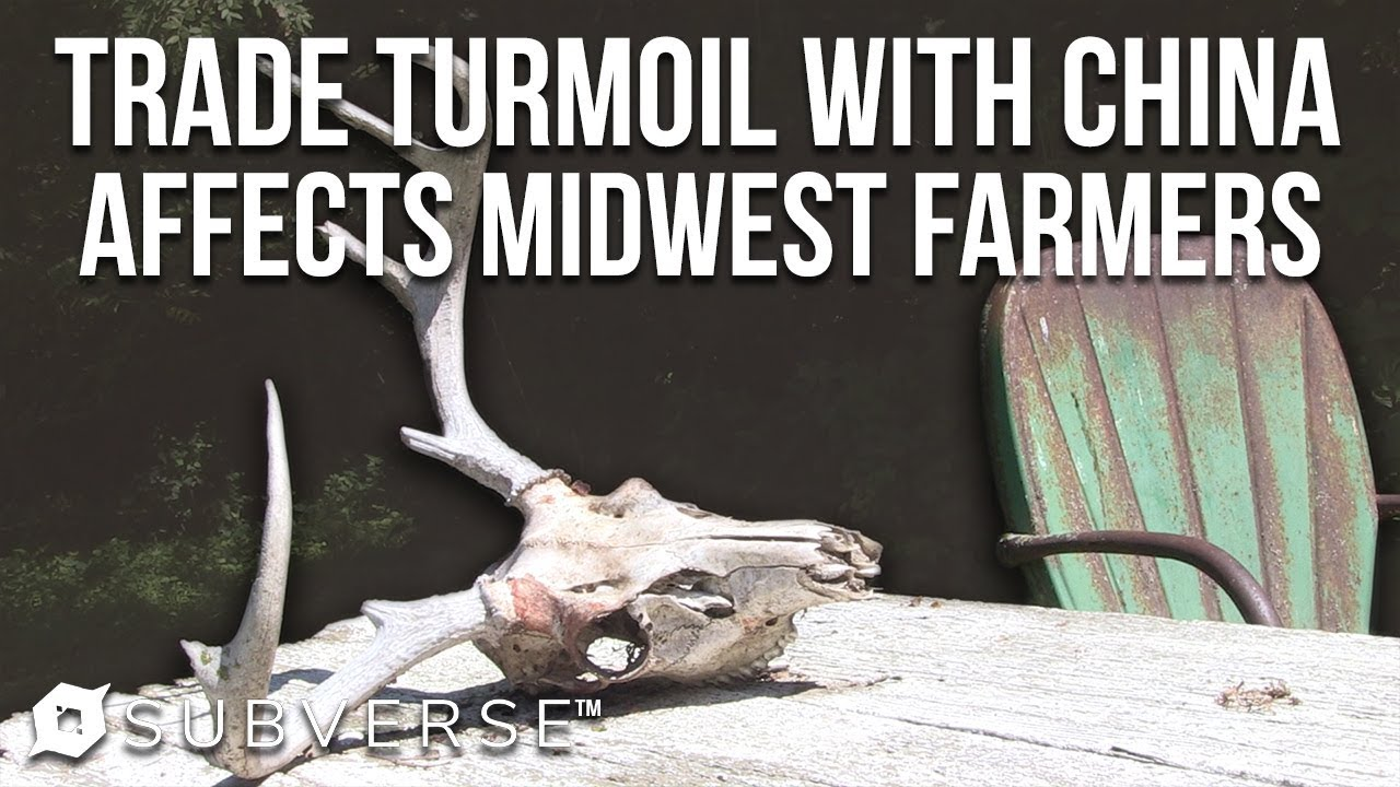 Trade Tensions with China are Affecting Farmers in the Midwest | Subverse News