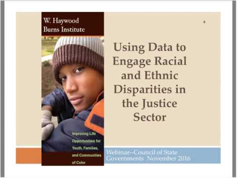 Identifying Racial and Ethnic Disparities in the Criminal and Juvenile Justice Systems thro