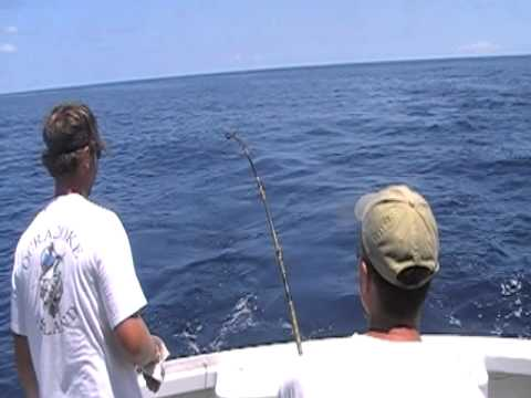 Offshore fishing on the drumstick ocracoke nc youtube for Ocracoke fishing report