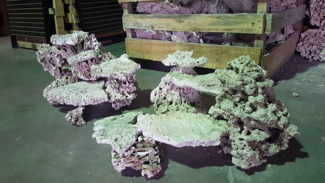 Reef aquascape for a 4 foot tank by fijireefrock.com (JR ...
