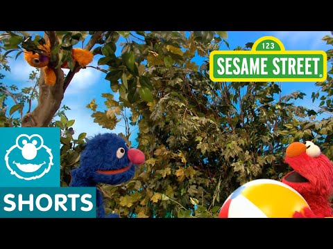 Sesame Street: David Must Come Down