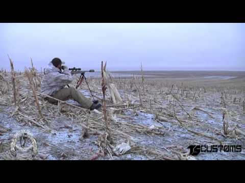 Coyote Hunting, 3 Coyotes:  1st Annual Cheyenne River Classic Calling Contest
