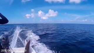 10.04.2018 Мальдивы , о-в Ган, продолжаем путь на необитаемый остров