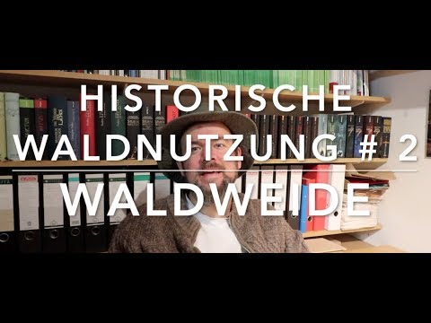 Waldweide - Hist. Waldnutzung # 2